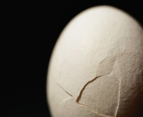 Peras, a hard surface to egg. Pinterest, an egg publications other.