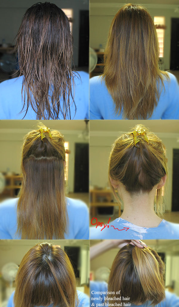 Hair Bleaching Diy Best Diy Do It Your Self