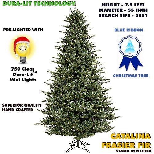 funny christmas songs. Fun and Funny Christmas Songs