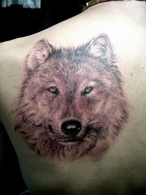 wolf tattoo design, shoulder free tattoo design Download