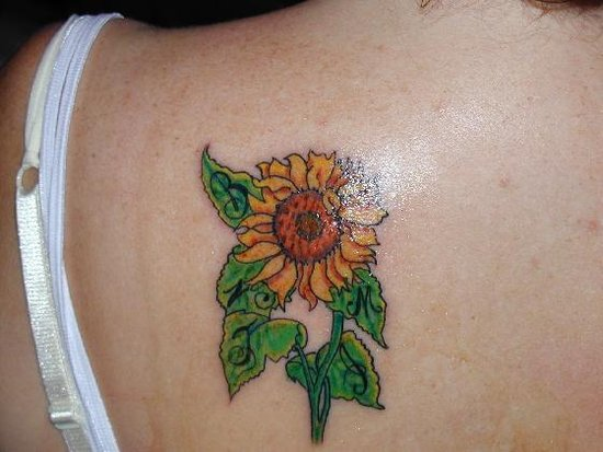 galerias de tatuajes aztecas. new tattoo. And an even better time to realize that yes, even though you. Colorfull Flower Tattoo Flowers in all their myriad diversity and color have