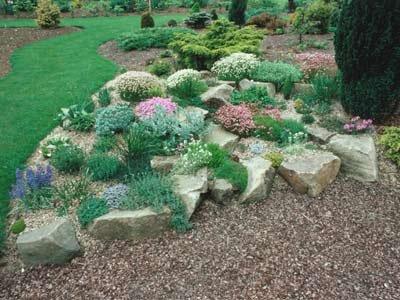 Rock Garden pic