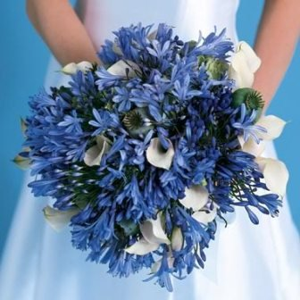 white and blue wedding bouquet Hot Blue Winter Wedding Flowers