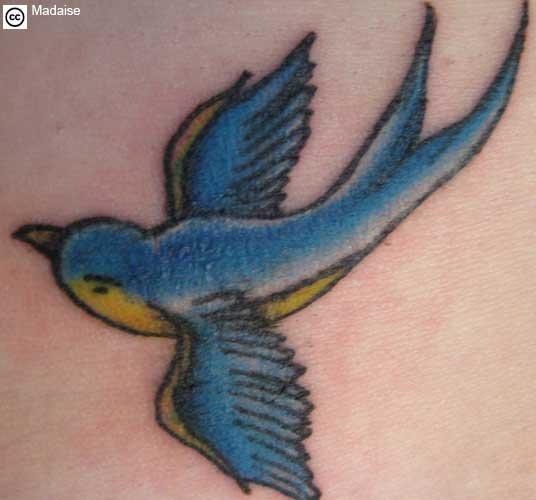 swallow bird tattoo. swallow tattoo
