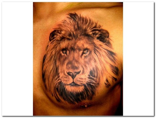 It is a very well done and very well detailed It 39s the face of a male lion