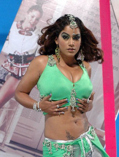 World's South Indian Actresses Hot   Photos Seen On www.coolpicturegallery.us