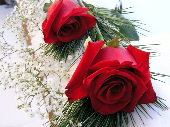 Pics Pulse Full Screen Latest 50 Most Romantic Red Roses Wallpapers