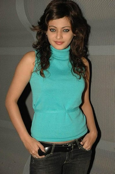 sneha ullal in saree