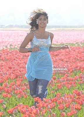 HOT ILEANA DCRUZ Pictures Gallery Sexy Telugu Beauty in Torned Jeans Pants