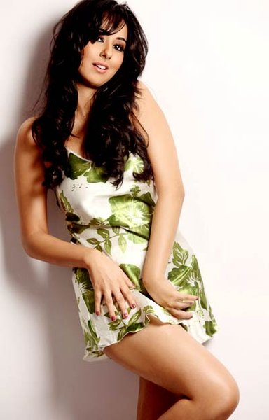http://media.onsugar.com/files/2011/03/10/4/1482/14826455/e4/Appalraju_Heroine_Sakshi_Gulati_Stills_286_29.jpg