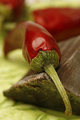 Chilli Peppers and Dark Chocolate on Green