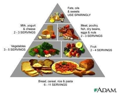 whimondifa: five food groups pyramid
