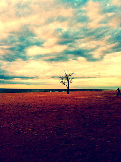 Spring on Lake Michigan, taken April 26th with iPhone 4.