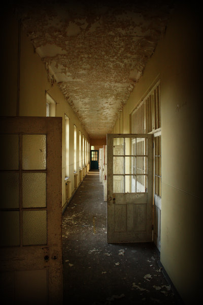 in essex county asylum as