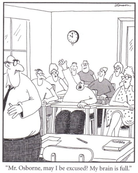 Far Side Comics Cartoon My Brain