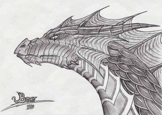 tribal dragon head. Dragon Head Pictures, Dragon