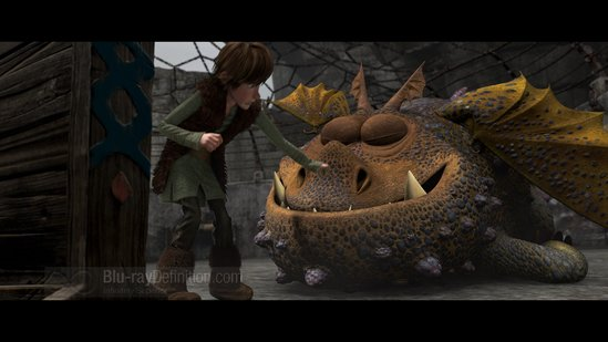 How To Train Your Dragon Wallpaper. How to Train Your Dragon Blu
