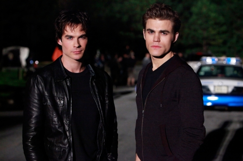 If You Were Elena, Who Would You Pick: Stefan or Damon ...