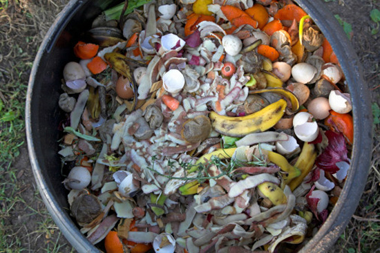 Save your food scraps and add it to a compost pile - Image courtesy of http://media.onsugar.com/files/ons1/192/1922195/27_2009/aadd7fa16651a846_composting1.jpg